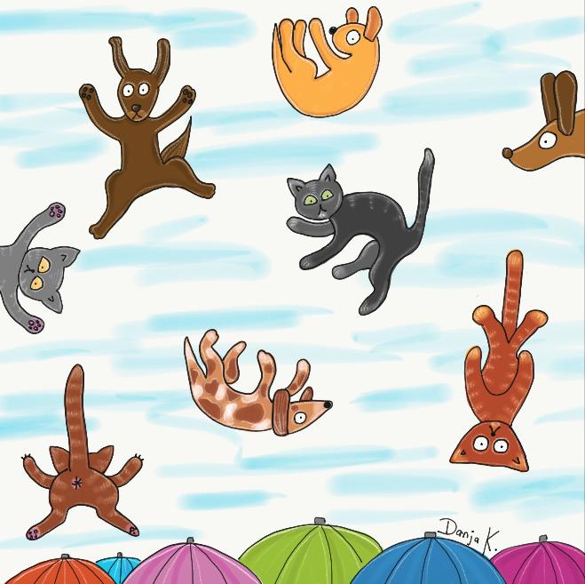Es regnet Hunde und Katzen